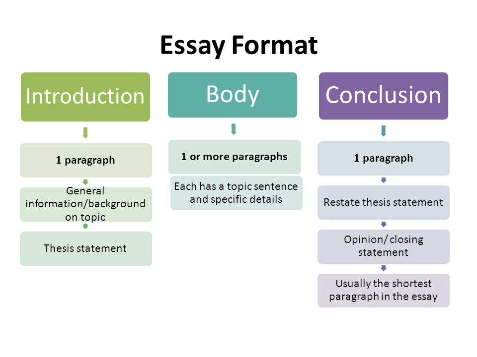 a typical essay format